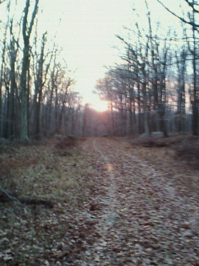 hike-onwayoutofharriman11-24-02.jpg